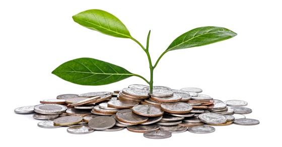 sustainability-nonprofit